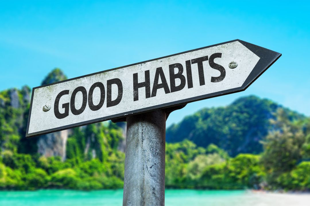What healthy habits can help you get a higher GMAT/GRE or SAT/ACT score